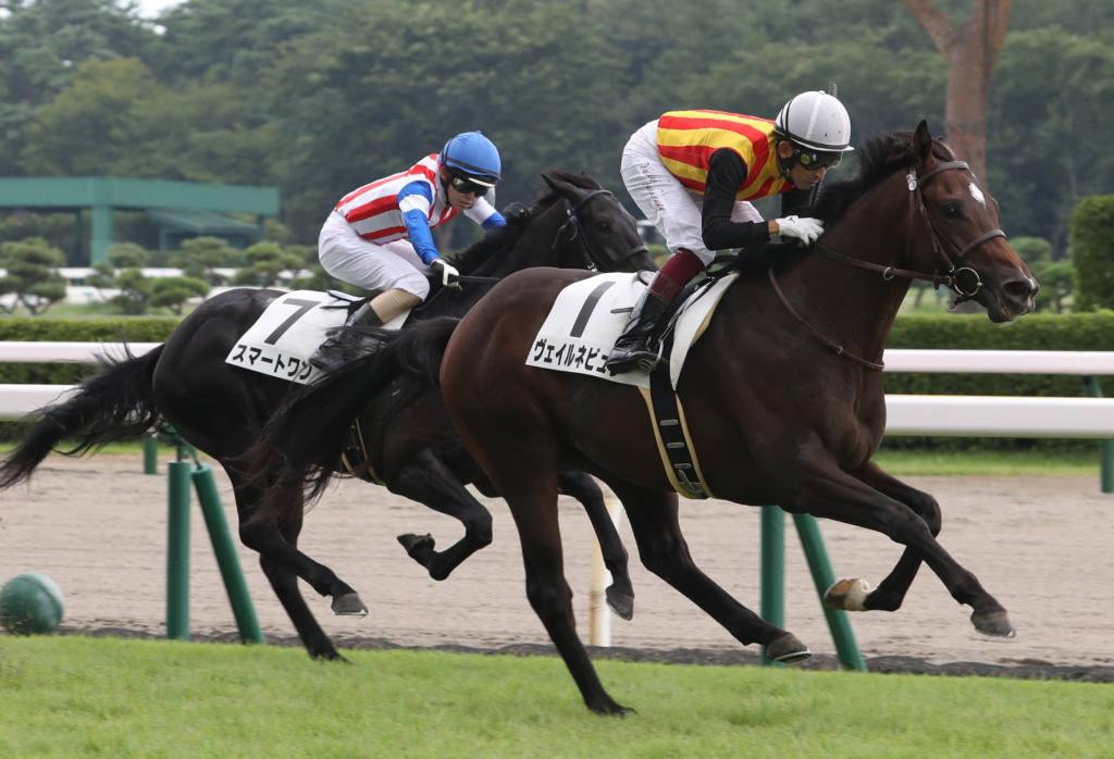 【新馬/小倉5R】エスケンデレヤ産駒 カシノレオが逃げ切る