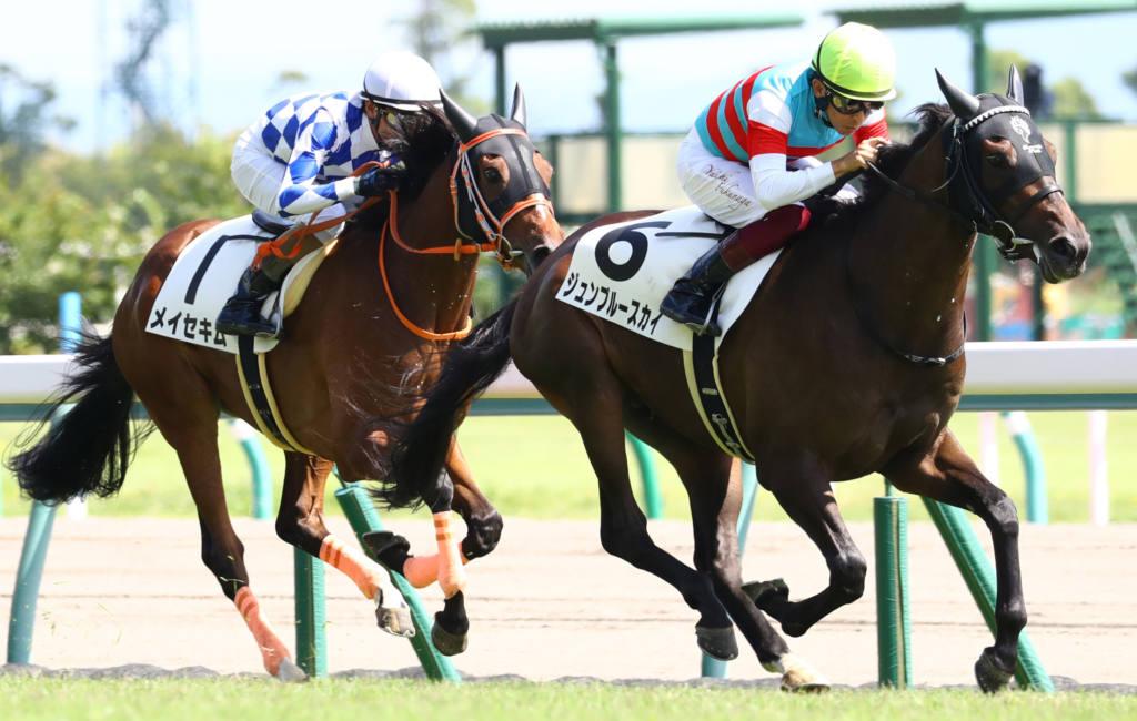 【新馬/中京5R】ジュンブルースカイが人気に応える
