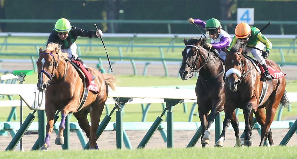 【セントライト記念】バビットが4連勝!逃げ切りで重賞2勝目