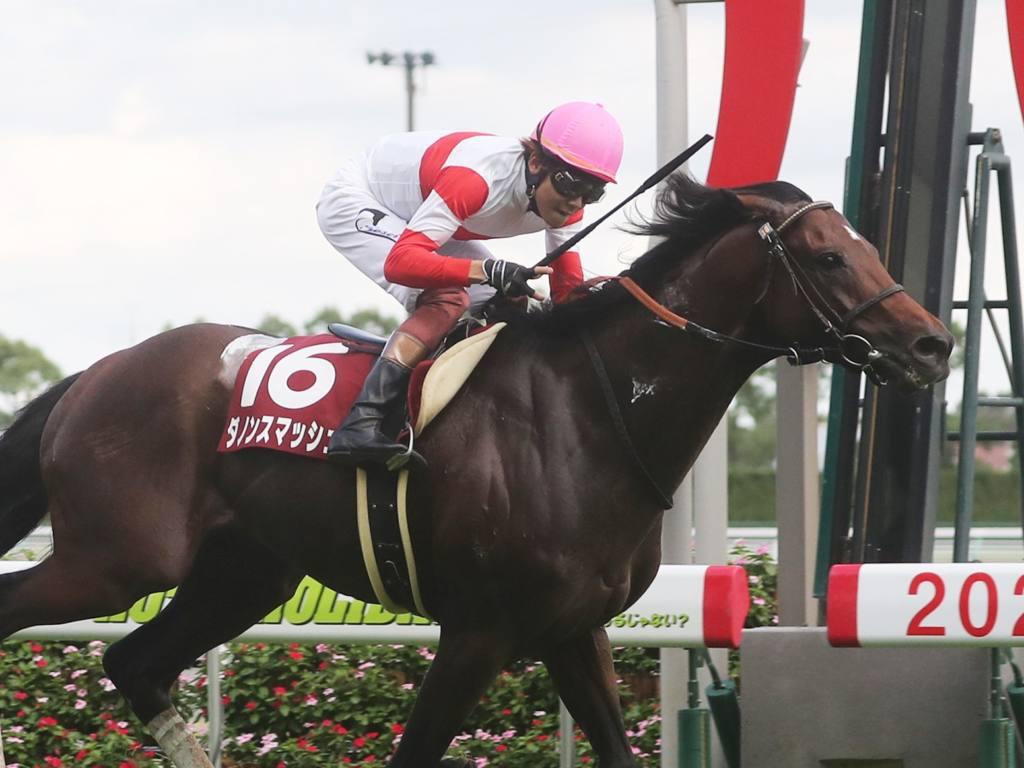 2020香港国際競走に出走予定の日本馬3頭が香港に到着(12月3日)