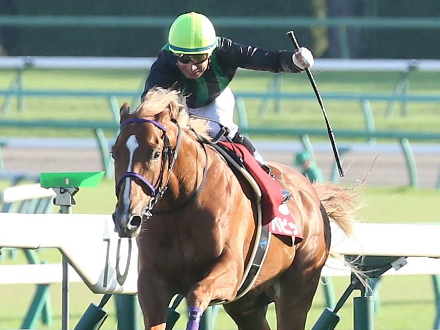 【セントライト記念】内田博「フロック気味に思われていた」バビットが4連勝!