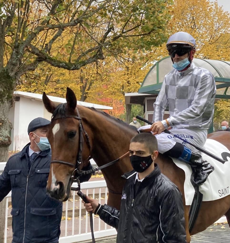 【海外競馬】G3フロール賞4着 アマレナは来年に向け休養