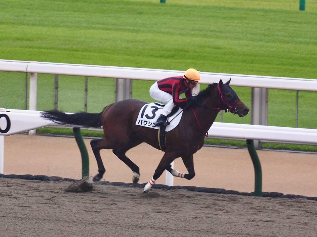 【東京1R】バクシンが10馬身差の大勝!