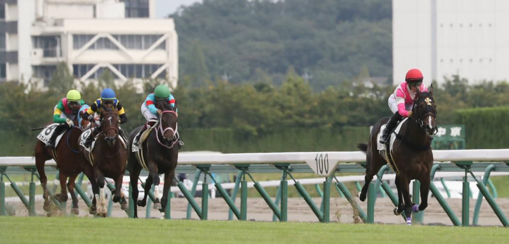 【新馬/中京5R】クインズラベンダーが人気に応える