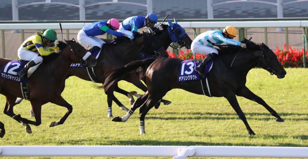 【菊花賞】登録馬と見どころ コントレイルが無敗の三冠達成なるか