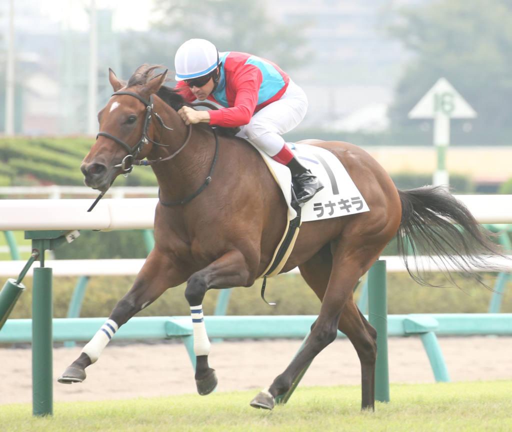 【新馬/中山3R】ラナキラが人気に応えてデビューV