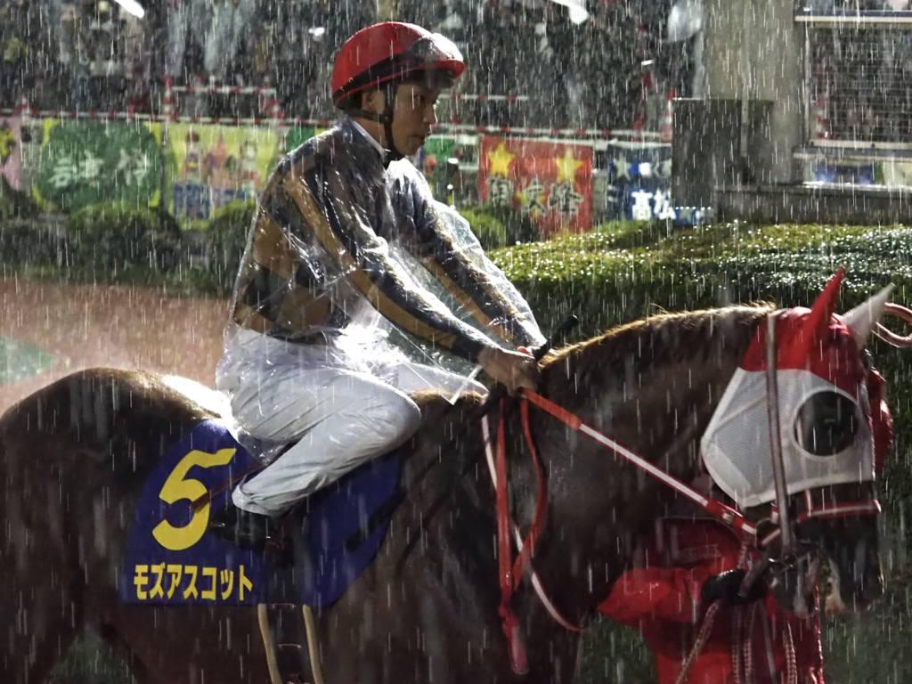 【南部杯】横山武「勝ちたかったです」モズアスコットは惜しい2着