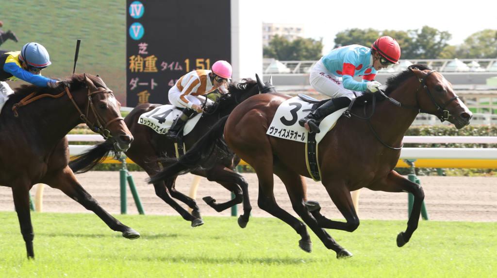 【新馬/東京5R】ヴァイスメテオールがデビューV!サトノクラウン半弟は敗れる