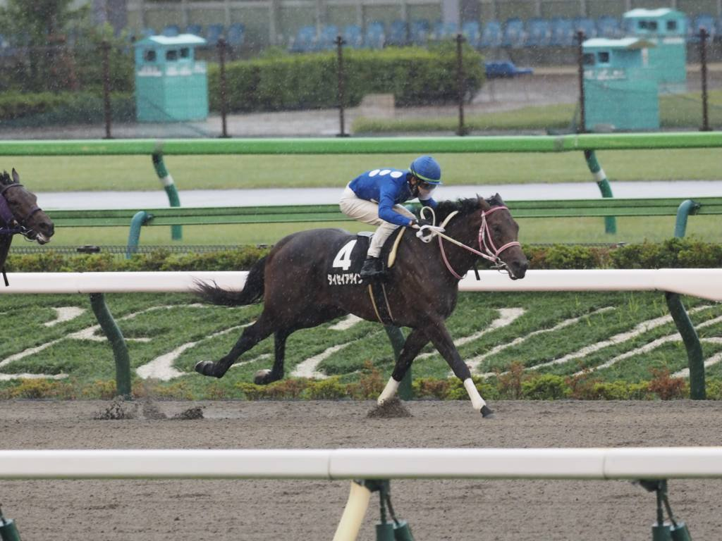 【新馬/東京5R】ロードカナロア産駒 ヴィクトゥーラがデビューV