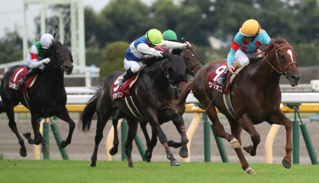 【毎日王冠】サリオスが古馬を圧倒!秋初戦を勝利