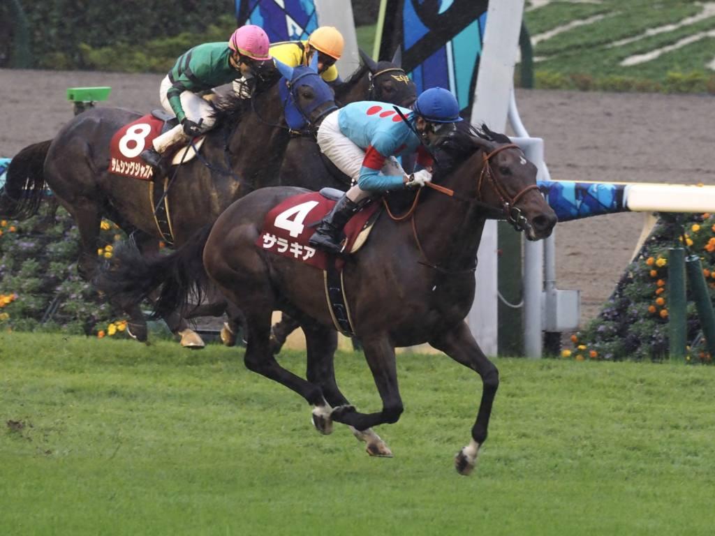 【新潟2R】ホールシバンが5馬身差圧勝!