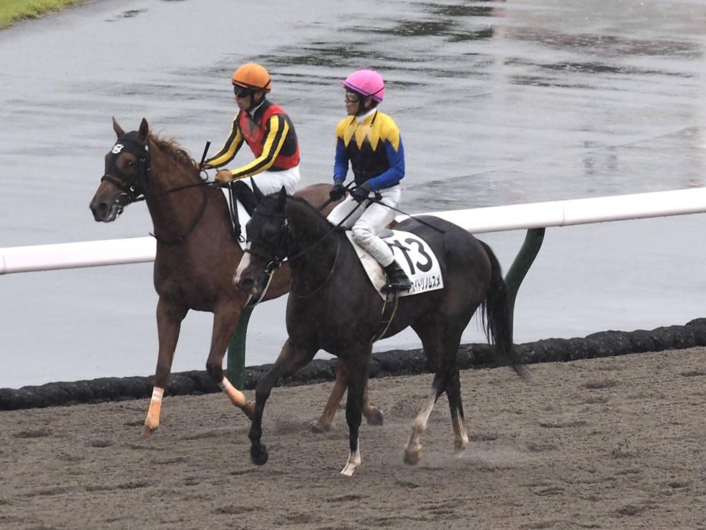 【東京2R】アパパネの仔 アカイトリノムスメが初勝利