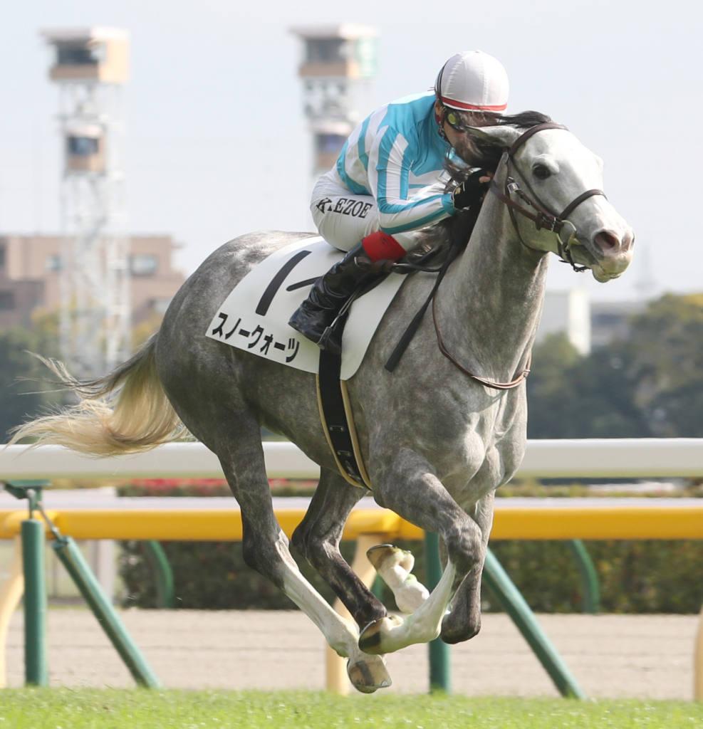 【新馬/東京5R】ゴールドシップ産駒 スノークォーツがデビューV