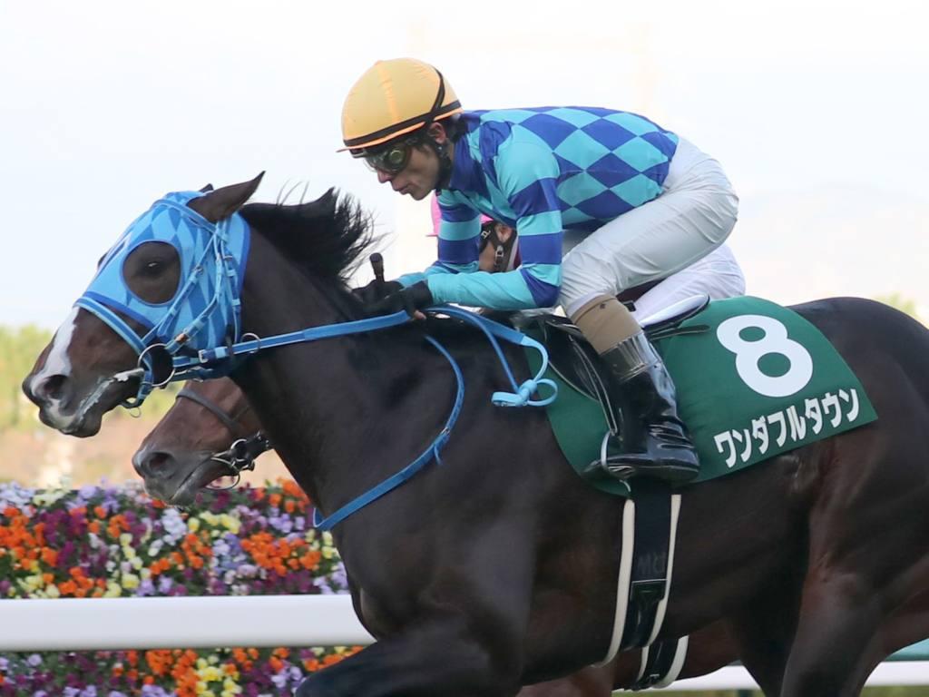 【京都2歳S】和田竜「馬自体も充実」ワンダフルタウンが重賞初V