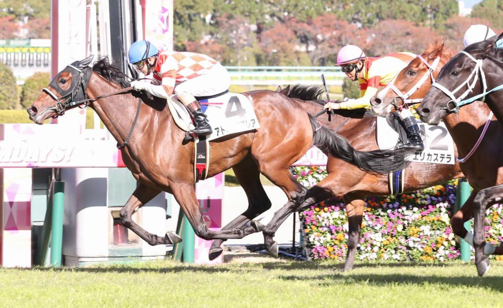 【新馬/阪神5R】ドゥラメンテ産駒 アトミックフレアがデビューV