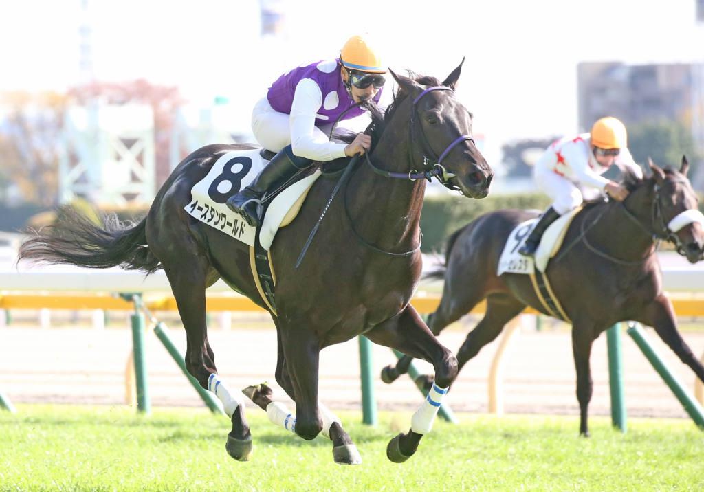 【新馬/東京5R】ワールドエース産駒 イースタンワールドがデビューV