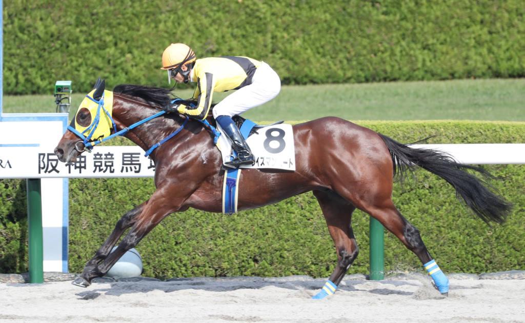 【新馬/阪神4R】ワイズマンハートが6馬身差圧勝V