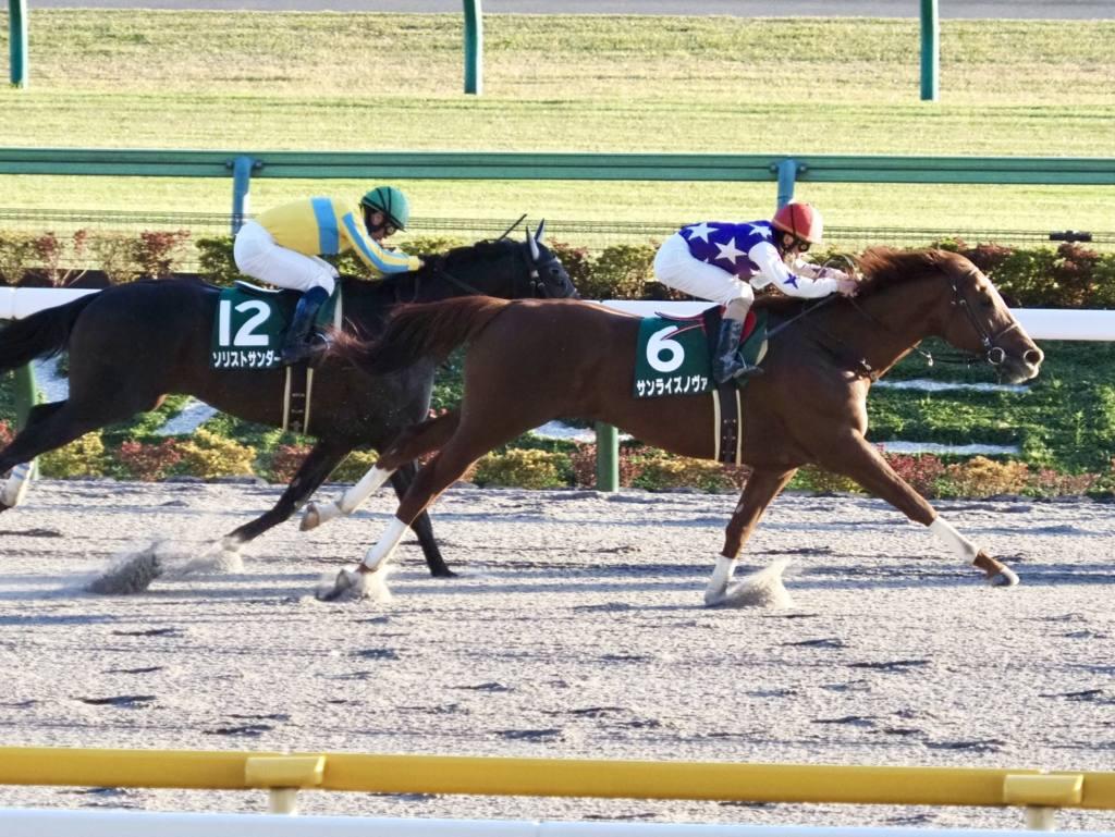 【武蔵野S】松若「馬から力を感じる」サンライズノヴァが重賞5勝目
