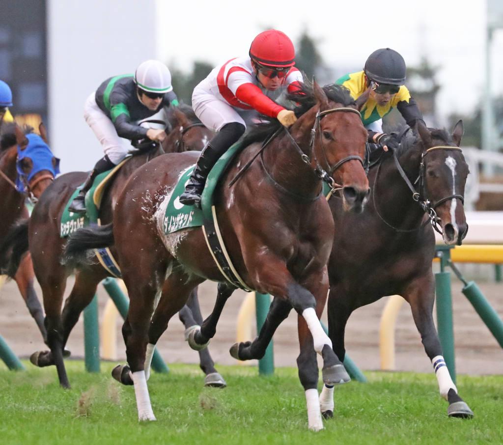 【有馬記念】出走馬の調教後の馬体重