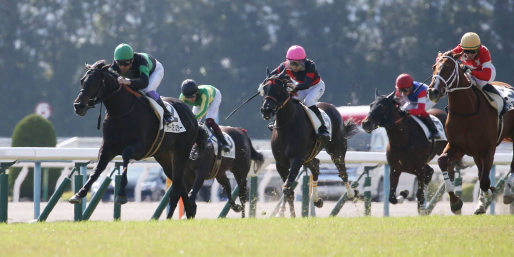 【東京7R】デムーロ「よく頑張ってくれた」テンバガーが2勝目