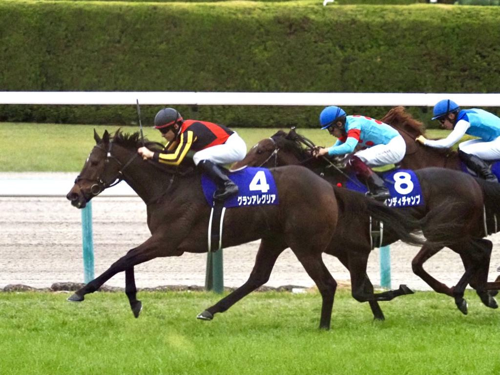 【マイルCS】福永「勝ち馬の仕掛けを遅くさせたのですが…」インディチャンプは2着