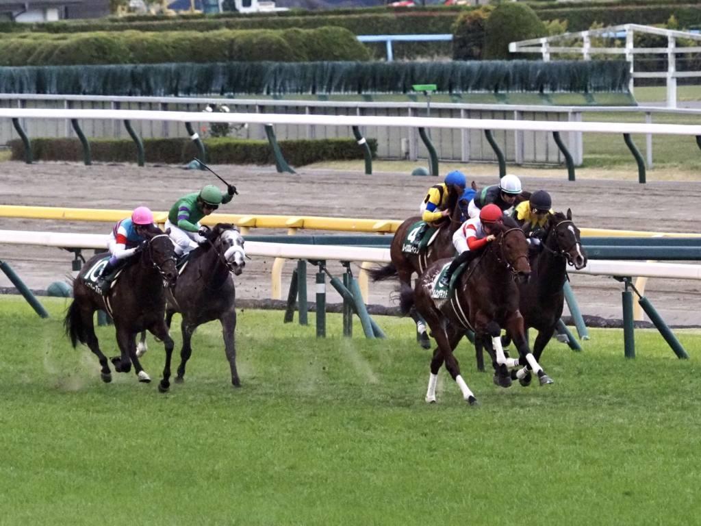 【東スポ杯2歳S】川田「非常に楽しみな馬」ダノンザキッドが出世レースを勝利