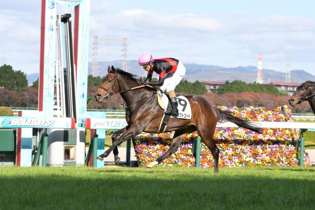 【阪神7R】ディープ産駒 ストリクトコードが2馬身差完勝!