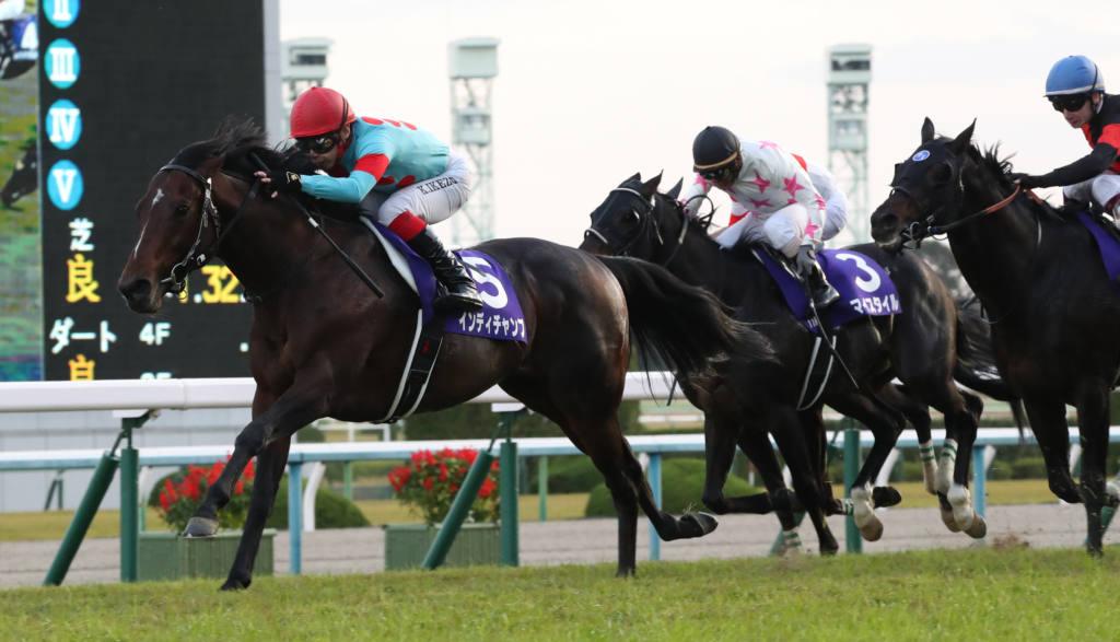 【外厩】マイルチャンピオンシップ