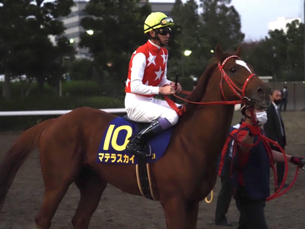 【JBCスプリント】戸崎「揉まれる競馬が…」1番人気ジャスティンは伸びきれず