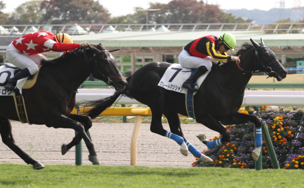【新馬/東京4R】ディープインパクト産駒 グレートマジシャンがデビューV