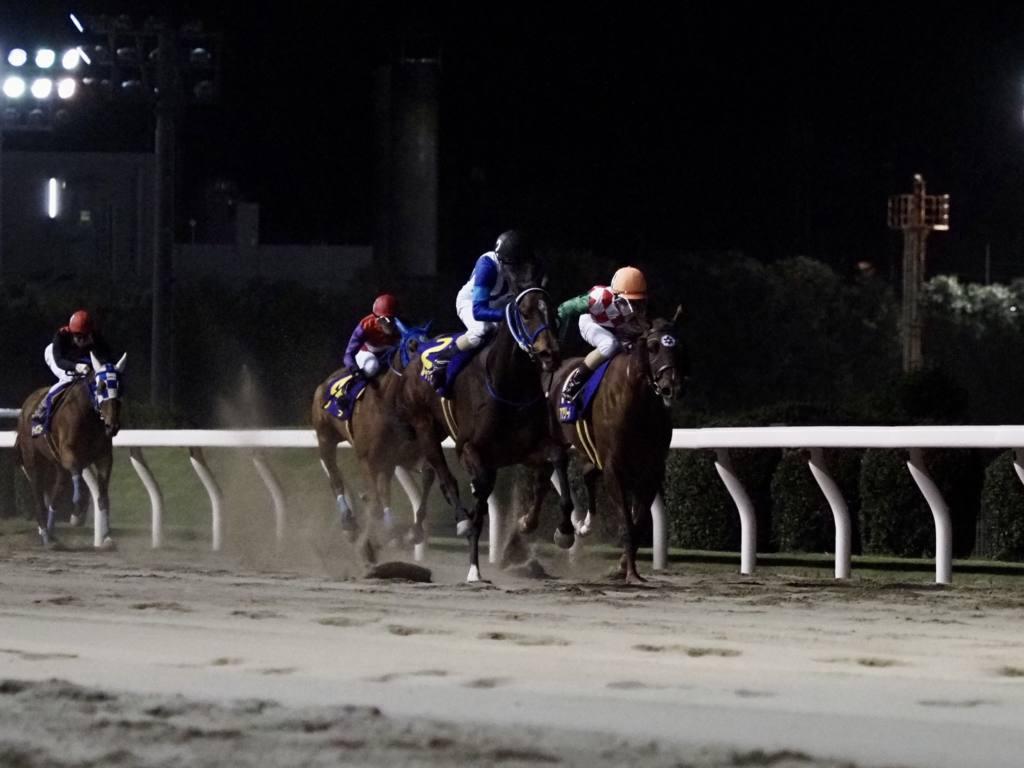 【川崎・ロジータ記念】ルイドフィーネが重賞初V!南関2冠牝馬のアクアリーブルは2着
