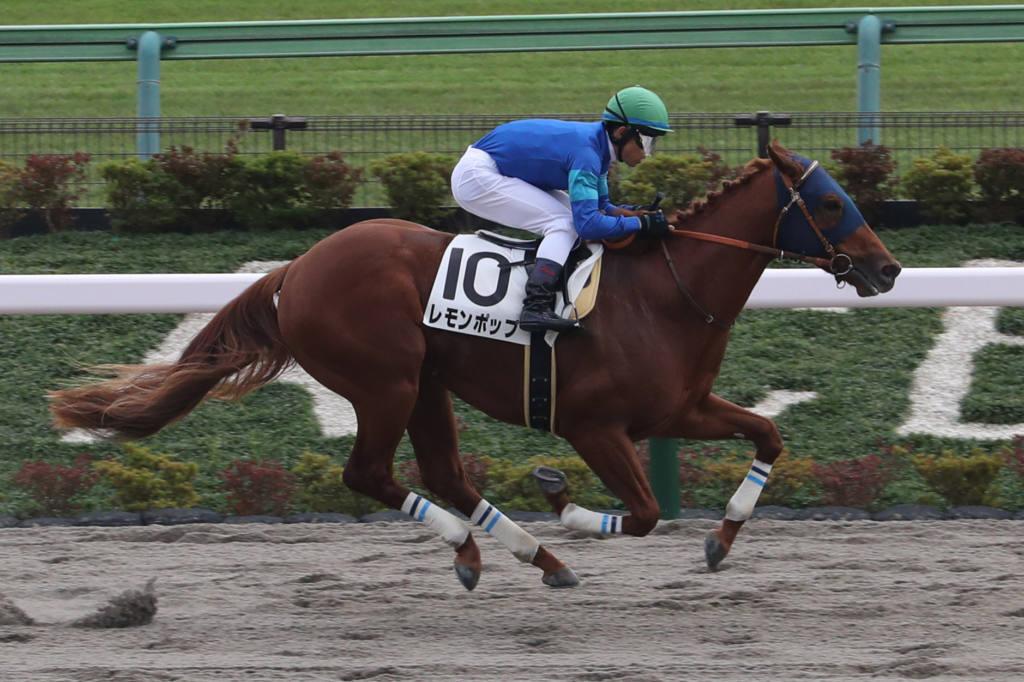 【新馬/東京5R】エスポワールシチー産駒 イグナイターが7馬身差圧勝
