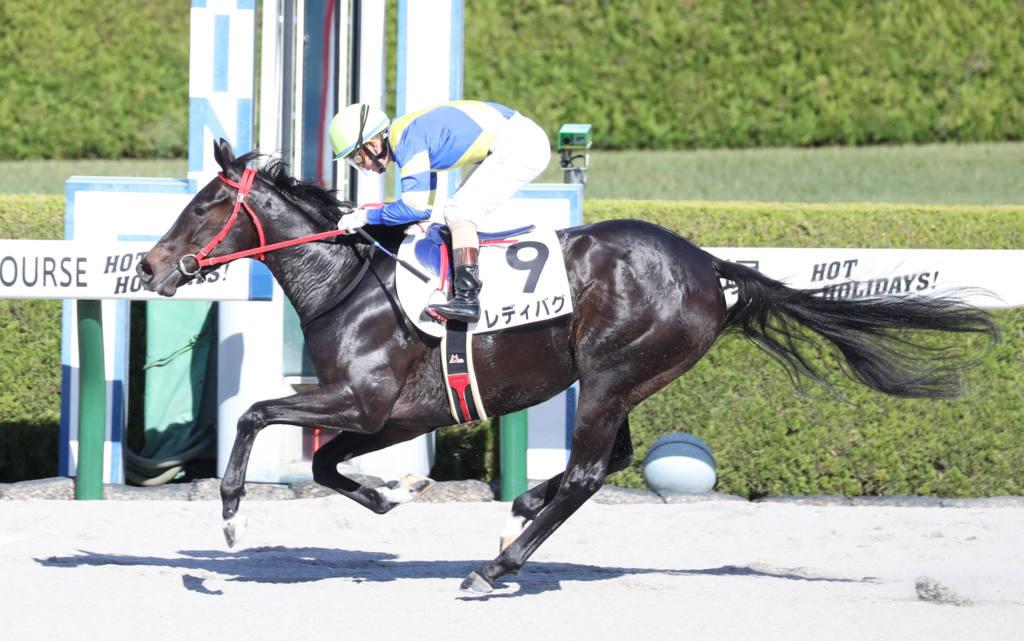 【新馬/阪神4R】9番人気の伏兵 レディバグが5馬身差圧勝デビュー