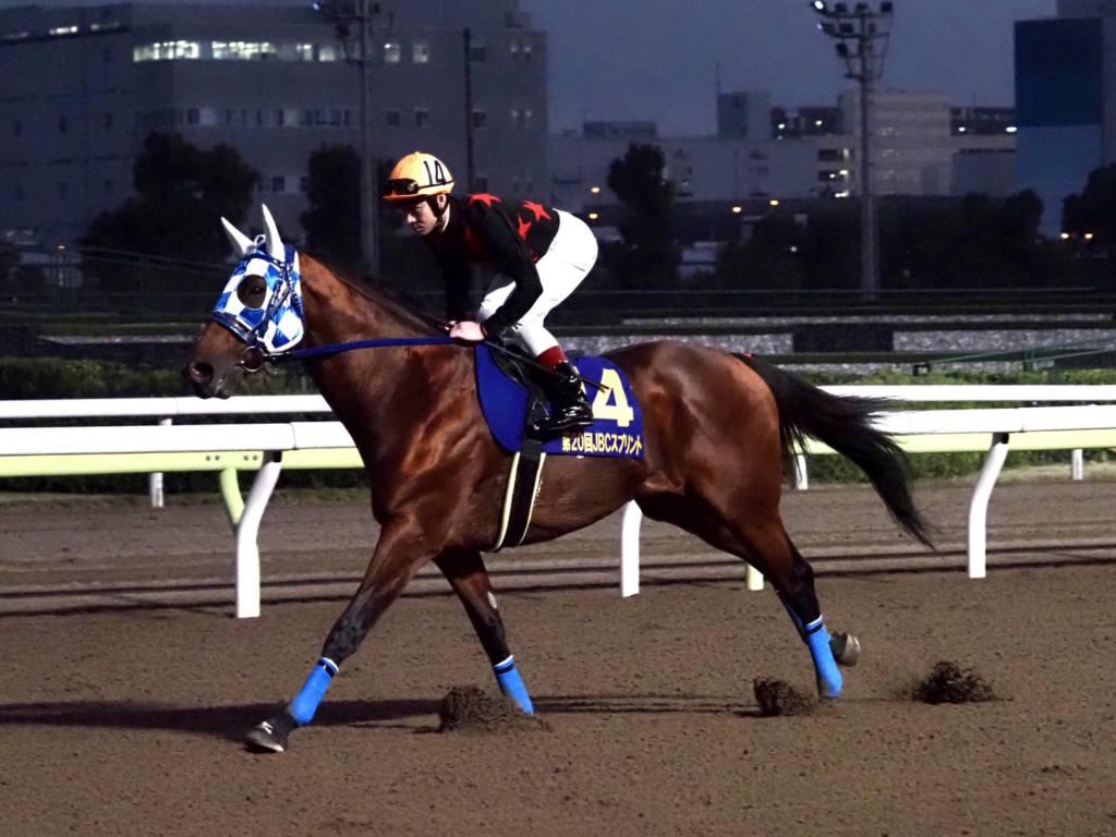 【JBCスプリント】武豊「向こう正面でプレッシャーが…」レース後ジョッキーコメント