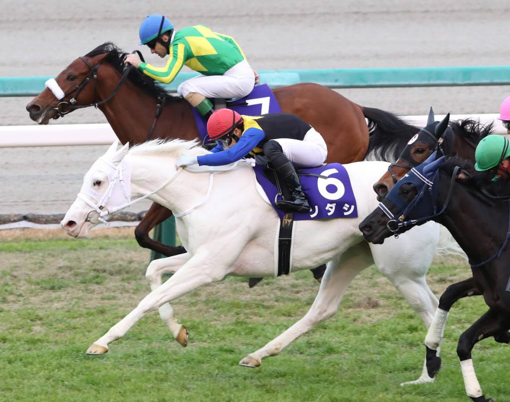【阪神牝馬S】デゼルの大外一気が炸裂!重賞初制覇