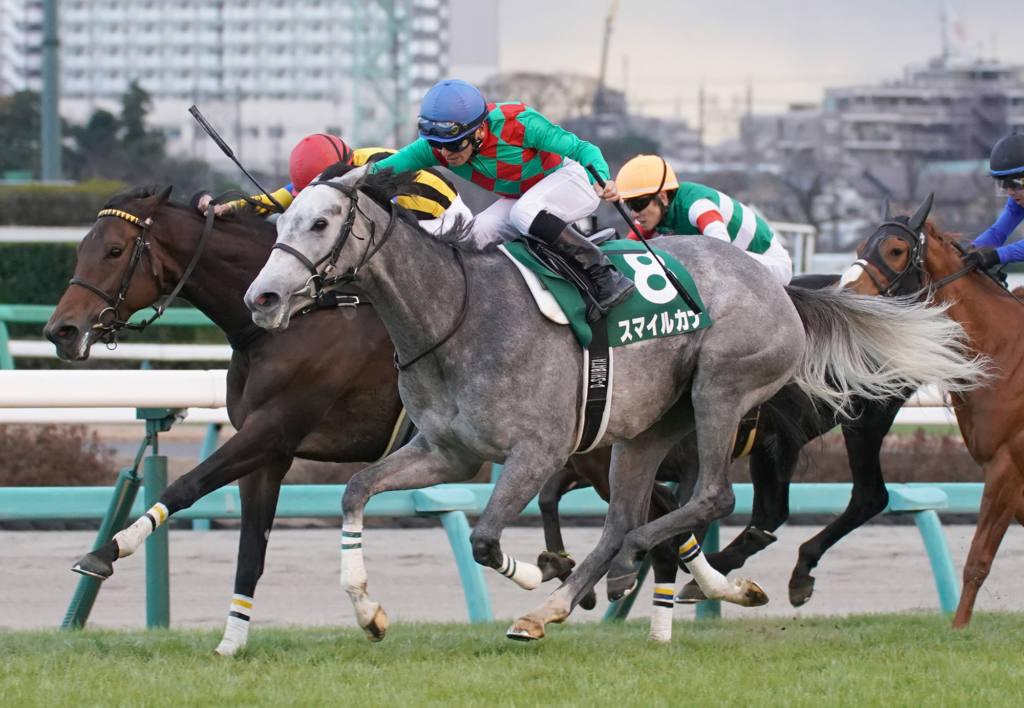 【ダービー卿CT登録馬】スマイルカナ、カラテなどが登録
