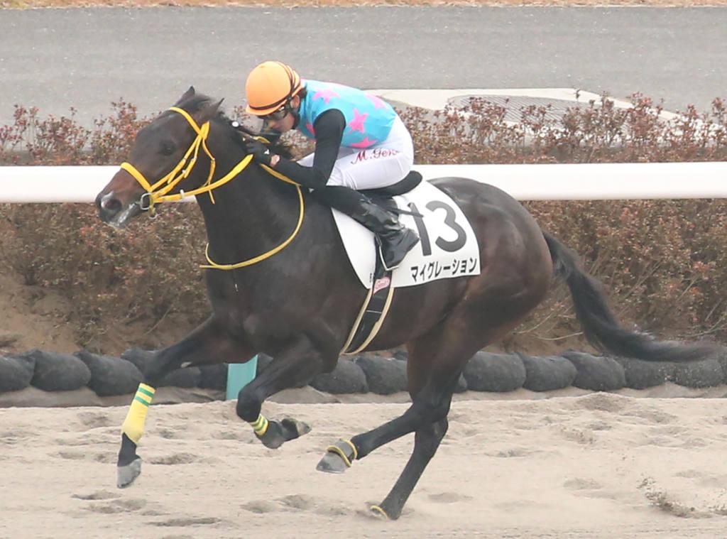 【新馬/中山5R】8番人気 グレートサークルがデビューV