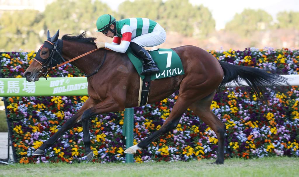 【中京4R】ヴィアルークスが初勝利