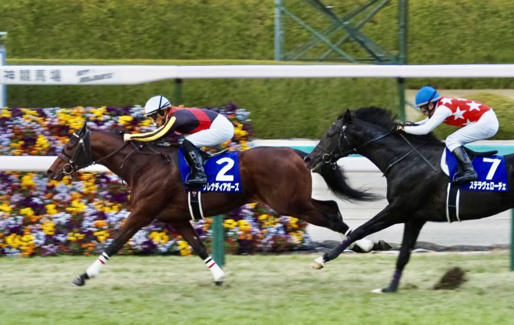 【朝日杯FS】福永「自分の判断がまずかったです」レース後ジョッキーコメント