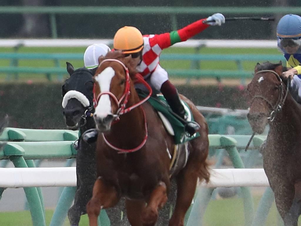 【阪神JF】吉田隼「馬に助けられました」ソダシが歴史的V