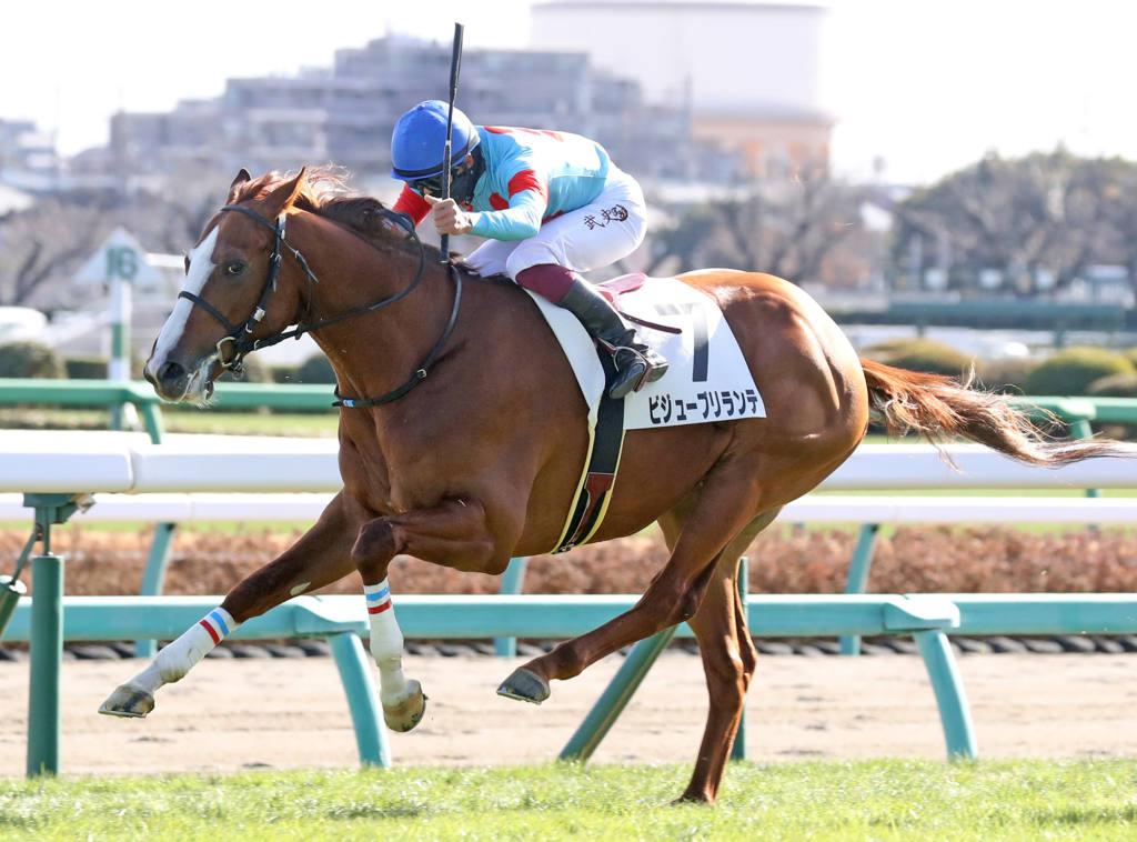 【尾張特別】大逃げ炸裂!ヒラボクメルローが9馬身差圧勝