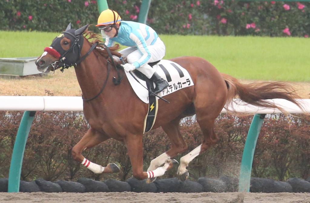 【新馬/中山6R】8番人気 アステルカーラがデビューV