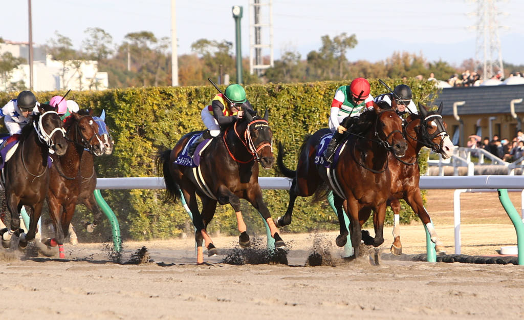 【チャンピオンズC】出走馬の調教後の馬体重