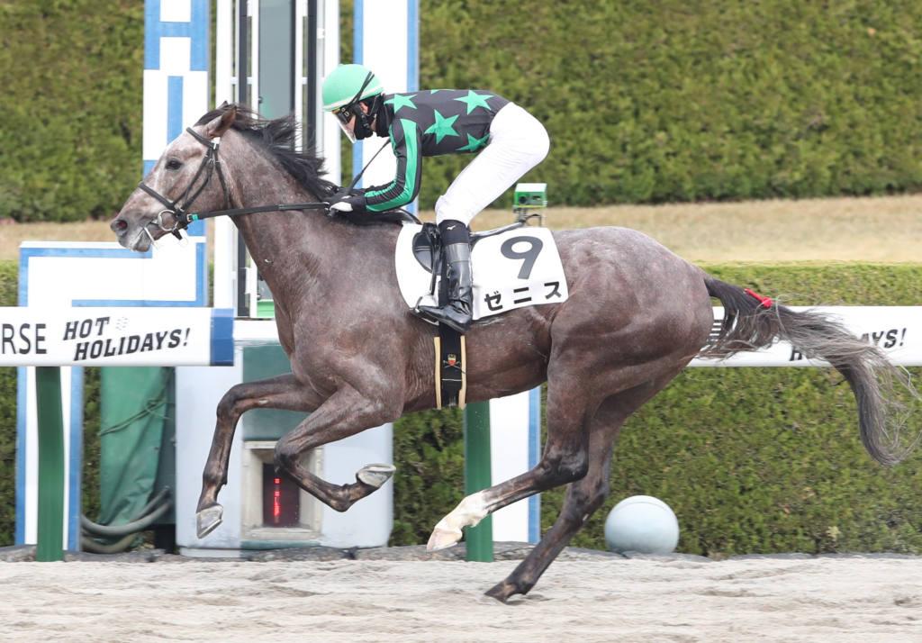 【新馬/阪神4R】パイロ産駒 ゼニスがデビュー勝ち