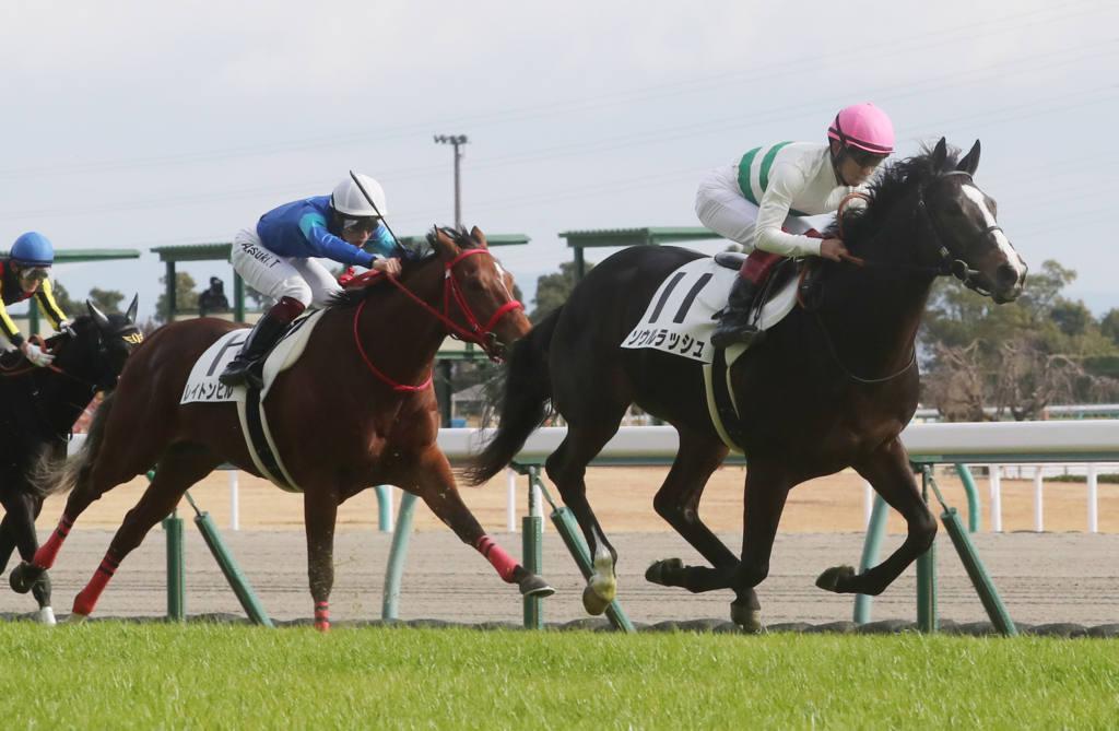 【新馬/中京5R】ルーラーシップ産駒 ソウルラッシュがデビューV