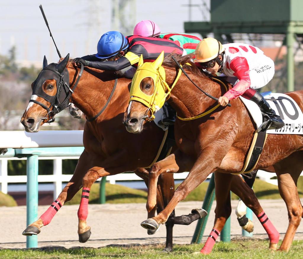 【新馬/阪神5R】エピファネイア産駒 エイシンピクセルがデビューV
