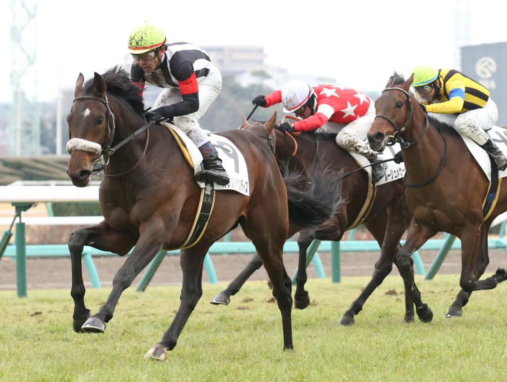 【新馬/中山6R】エピファネイア産駒 カレンレベンティスがデビューV