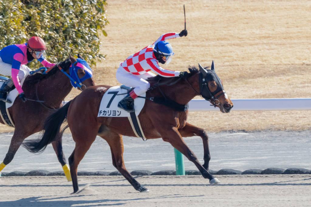 【中京3R】ハーツクライ産駒 チカリヨンが初勝利