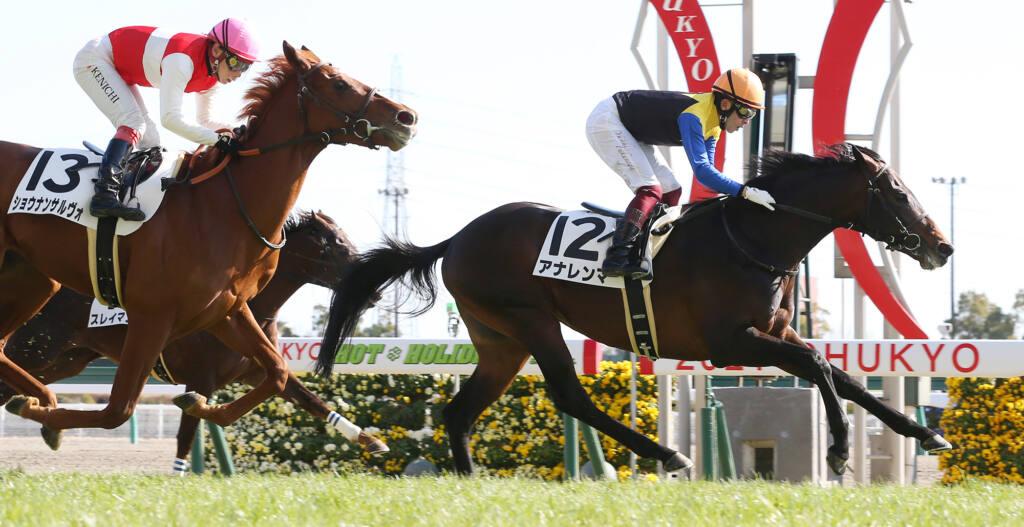 【東京2R】2億7000万ホース、サトノバトラーが初勝利