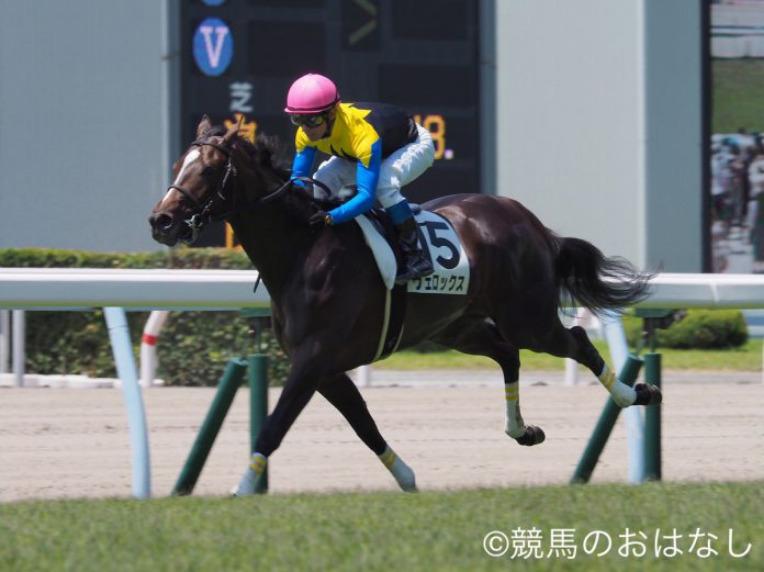 【東京新聞杯 登録馬】ヴェロックスなど18頭